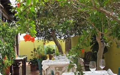 1479817605_aguaVivaRestaurantPlayaHondaLanzarote.jpg