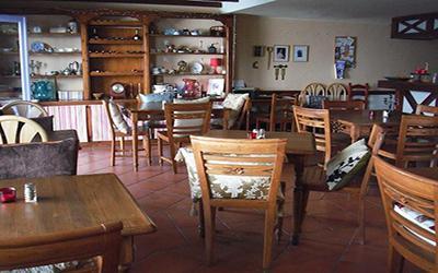 1480837601_vegetarian-restaurantBloomingCactusPuertoDelCarmen.jpg