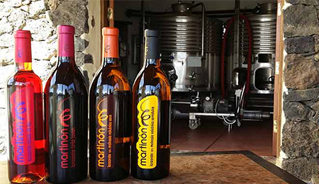 Planning your Wine Tour? Looking for the best deals on Lanzarote Island wine tours and other fun things to do in Lanzarote? Book your Lanzarote wine tours here  - Best Deals for Bodegas Martinon Visits - Wineries Tour