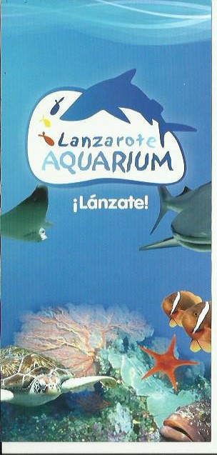 lanzarote aquarium lanzarote tours - Best Tours Lanzarote - Best Things To Do Lanzarote