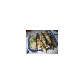 Grilled Sardines